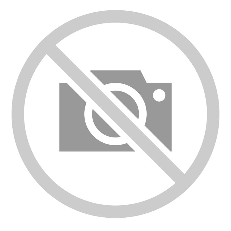 Logo Mytnik